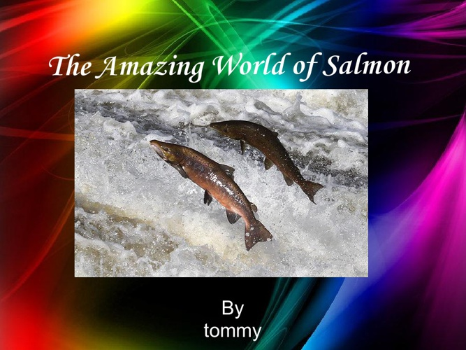 The Amazing World of Salmon
