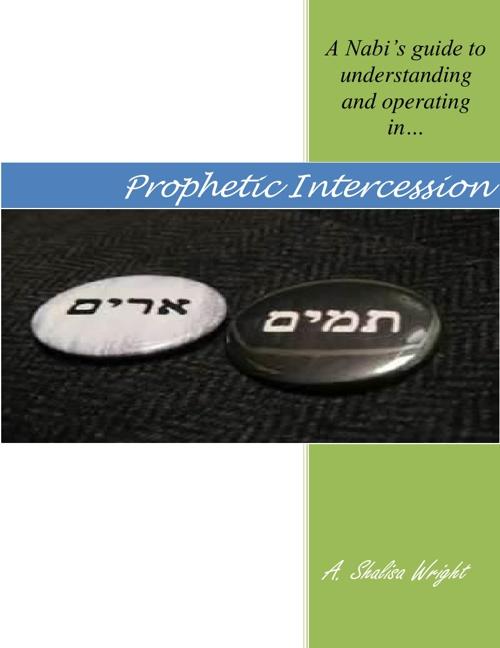 A Nabi's Guide