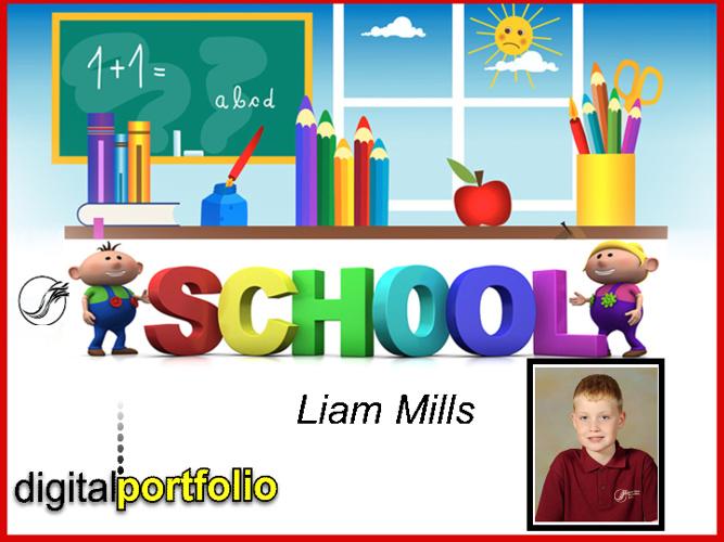 Liam's Portfolio