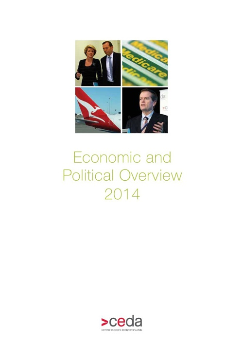 2014 Economic and Political Overview