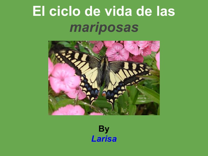 Larisa mariposa