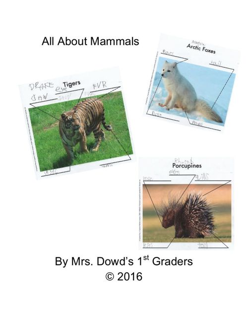 Dowd Mammal eBook