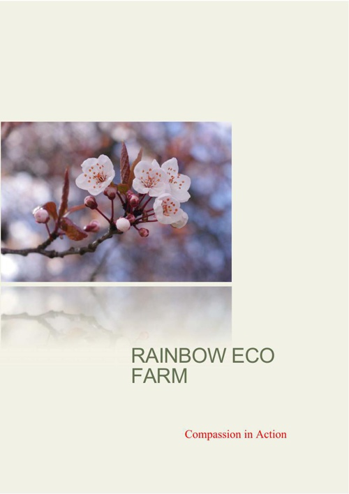 Compassion In Action: Rainbow Eco Farm