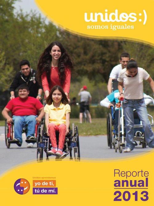 REPORTE ANUAL 2013