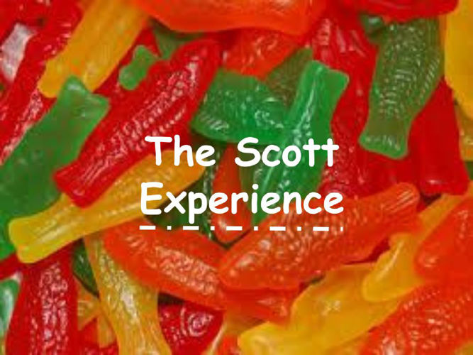 The Scott Experience- Rachel Anderson