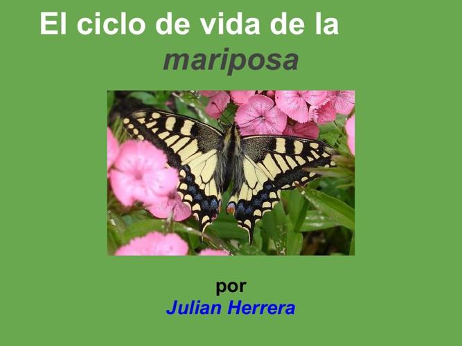 julian mariposa