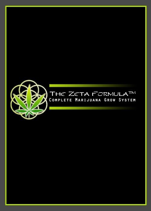 Z Formula Brochure