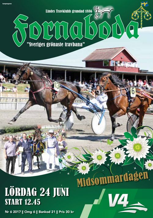 Lindesberg 170624 Midsommardagen