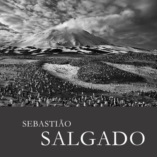 SALGADO CATALOGUE