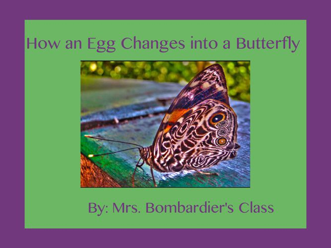 Mrs. Bombadier's Class