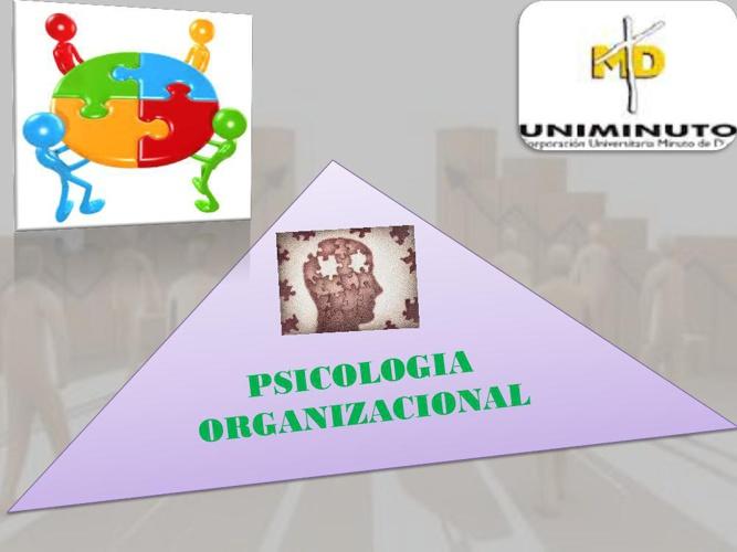 LIBRO VIRTUAL PSICOLOGIA ORGANIZACIONAL