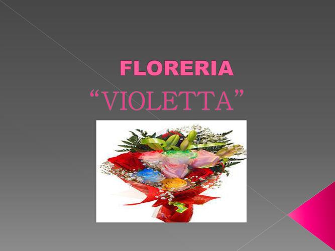 FLORERIA violetta