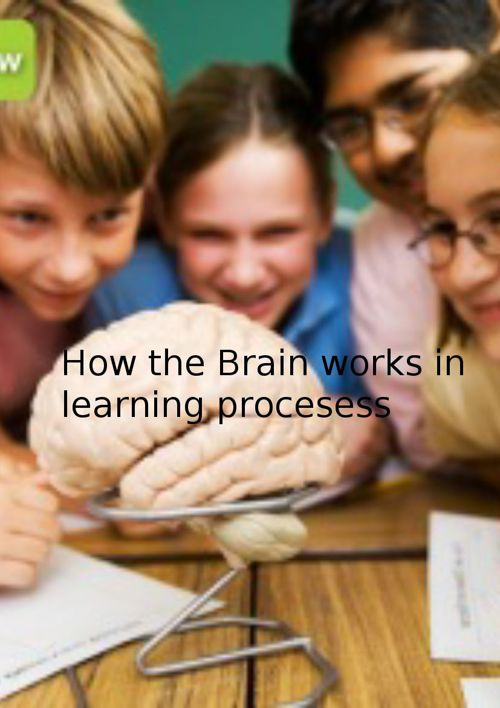 How the  Brain works in learning procesess