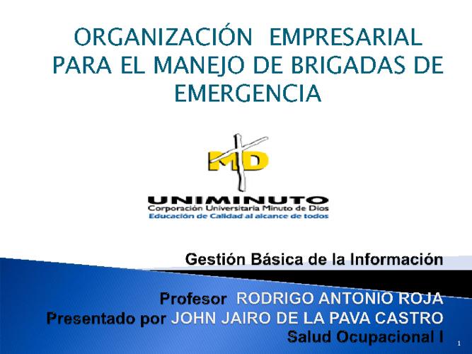 ORGANIZACION EMPRESARIAL PARA MANEJO DE BRIGADAS DE EMERGENCIA