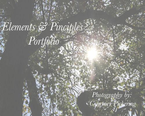 courtney pickering's elements and principles portfolio