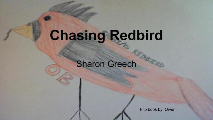 Owen Brown's Flipbook _ Chasing Redbird