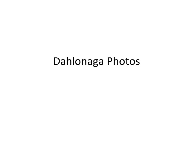 Dahlonega Photos