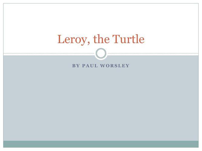 Leroy the Turtle