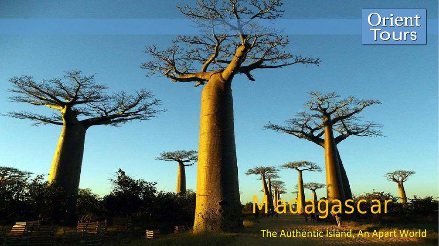 Madagascar E-brochures