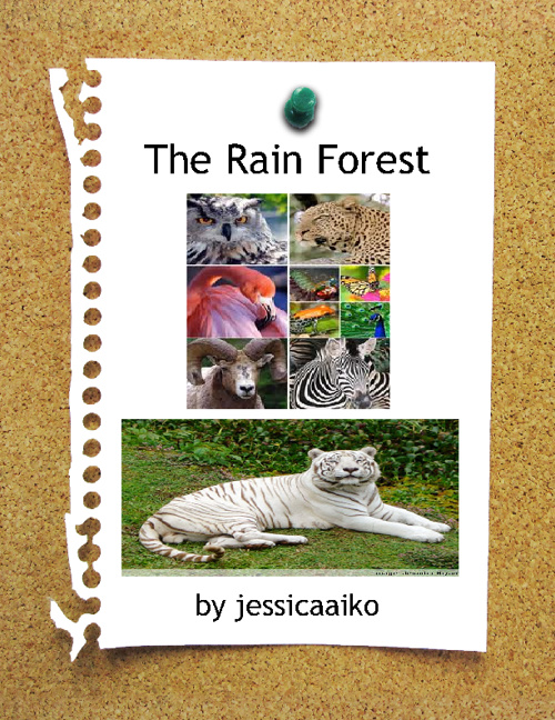 Rainforests by Jessica