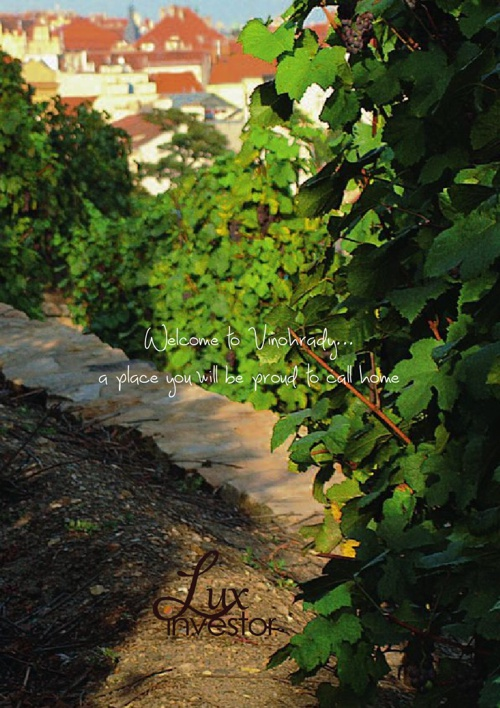 Vinohrady Redevelopment Project