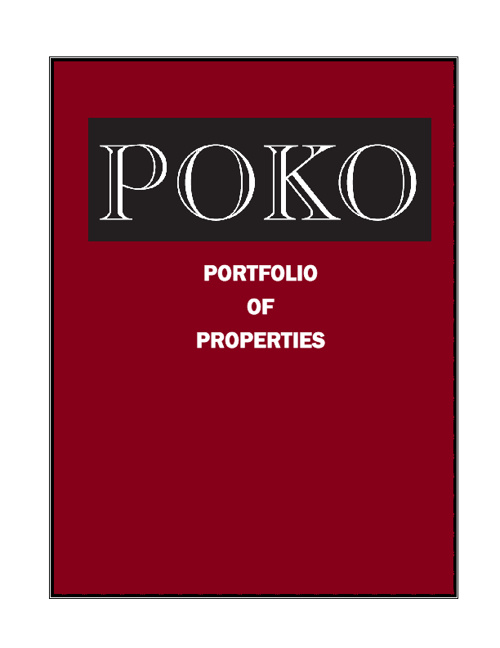 POKO Partners Development Experience