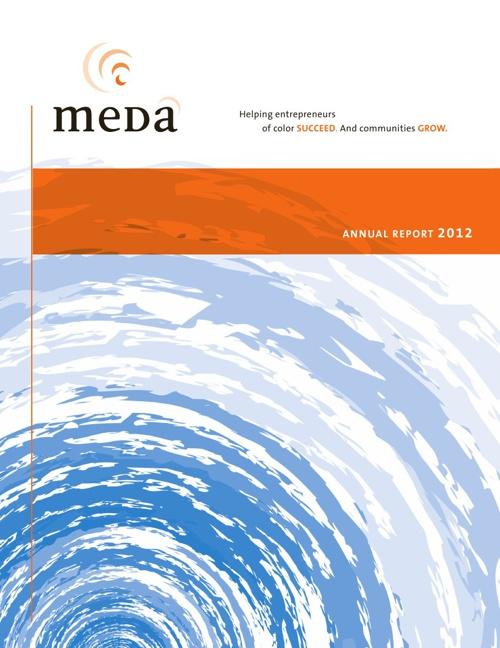 Meda 2012 Annual Report
