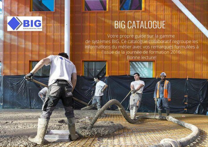 Final BIG catalogue formation