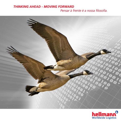 Catálogo Hellmann 2013