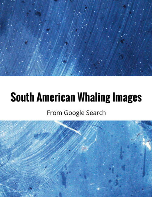 South American Whaling Images from Google Search