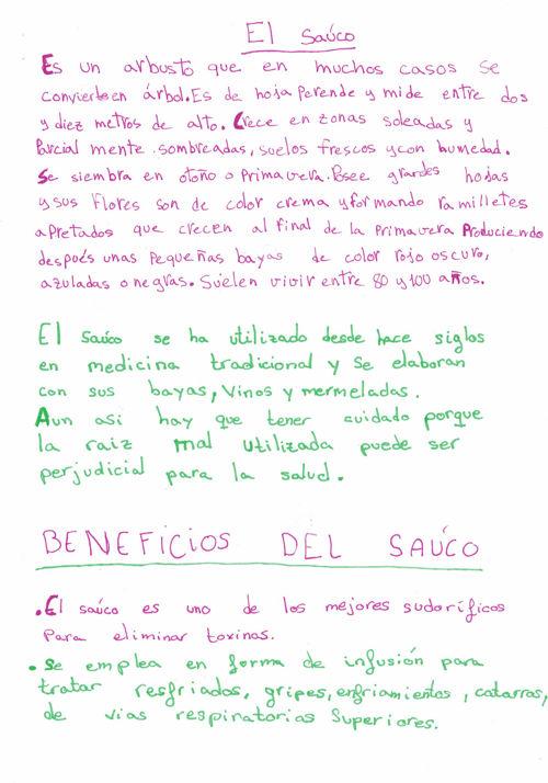 Trabajos CEIP Virgen de la Hoz