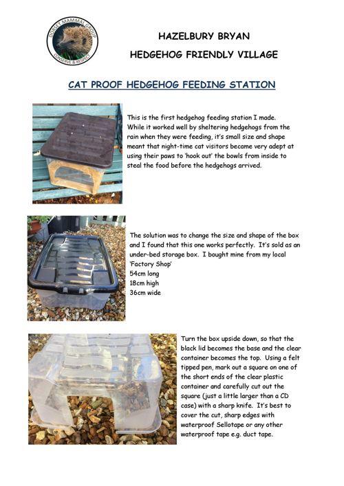 H Hog feed station (1)