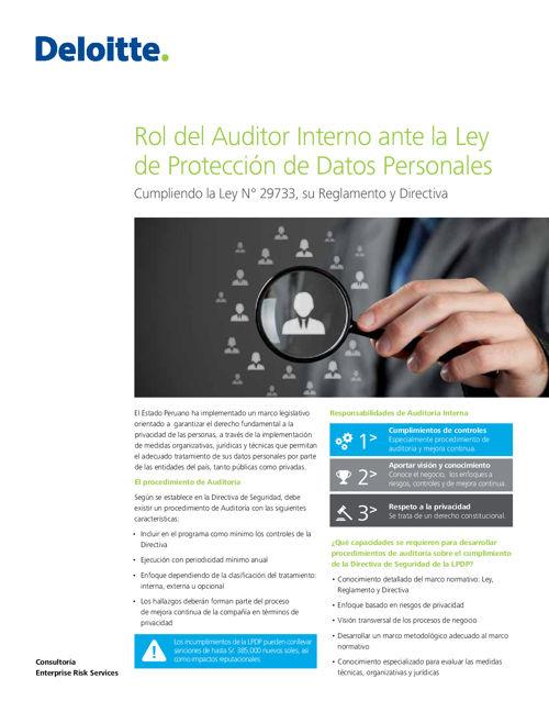 ERS Peru Rol del Auditor Interno ante la Ley de Proteccion de Da