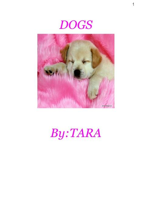 Dogs Tara