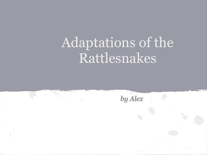 rattlesnake adaptations