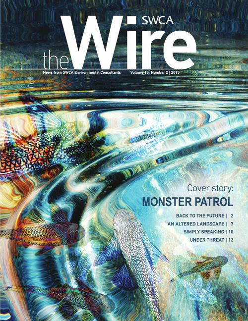 Wire_ Vol.15_No2_Draft5
