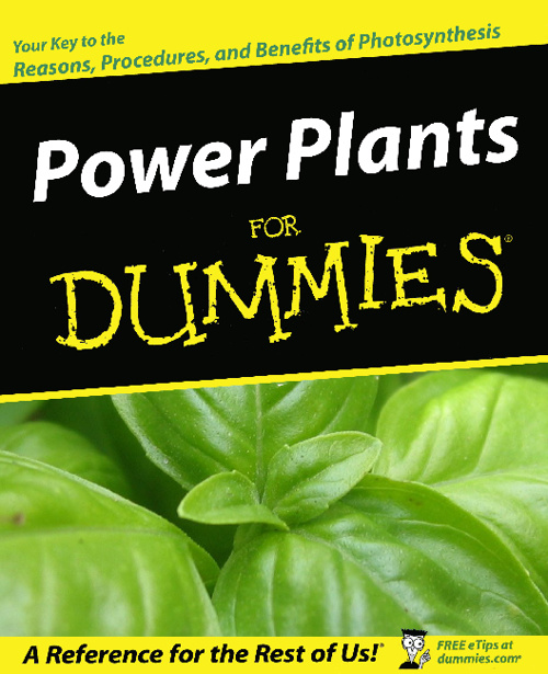 Power Plants for Dummies
