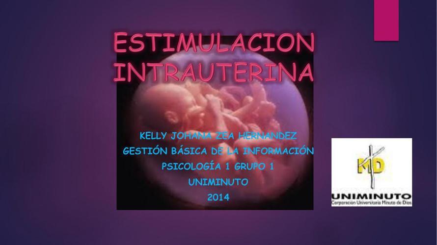 ESTIMULACION INTRAUTERINA pdf
