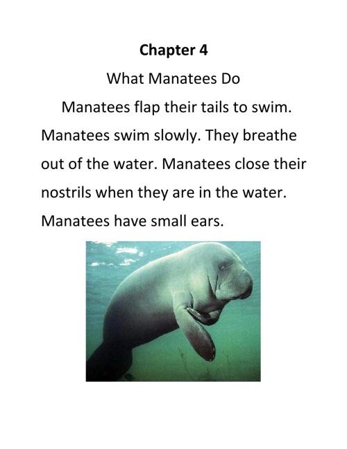 Manatees by Brock