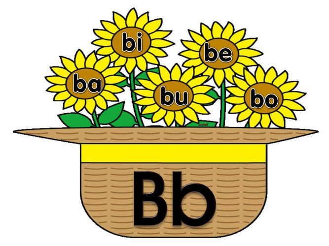 sunflower aeiou