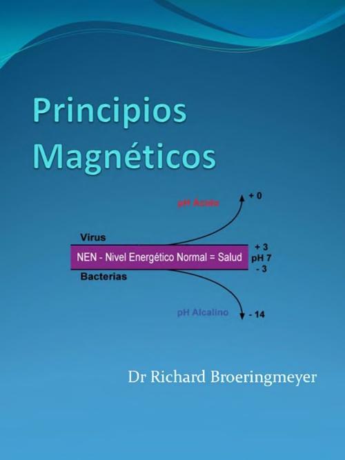 Principios Magneticos