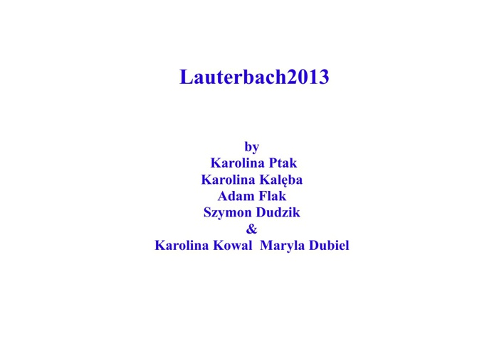 visit to Lauterbach Germany 2013 Comenius