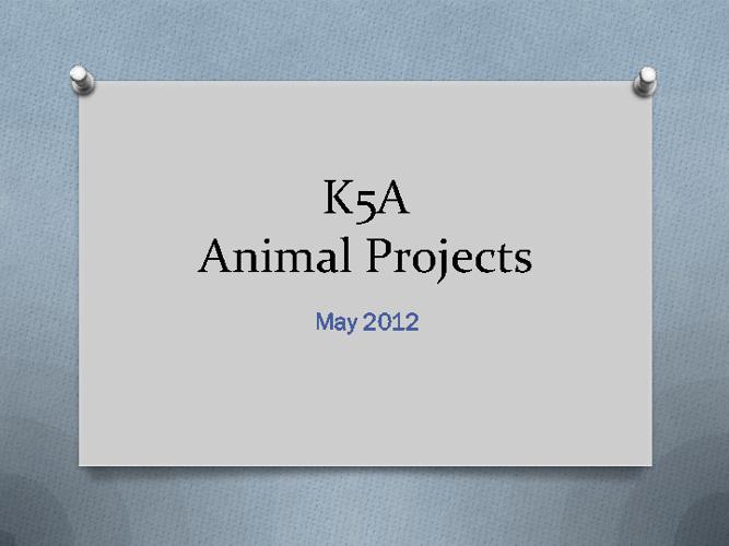 K5A Animals
