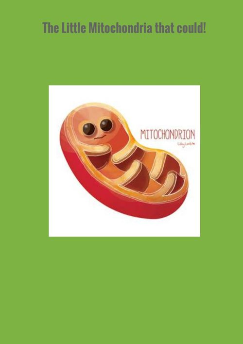 Little Mitochondria that could