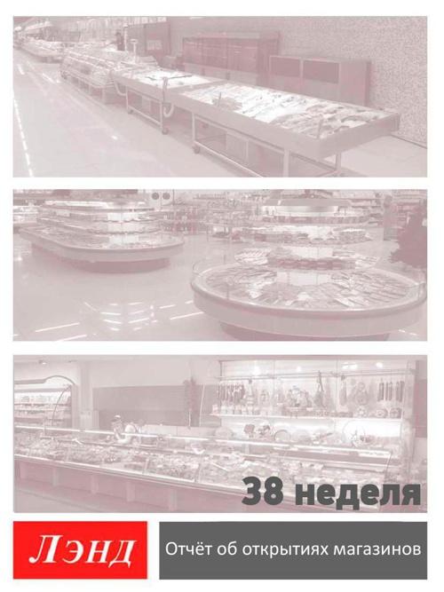 Отчет Арнег 38