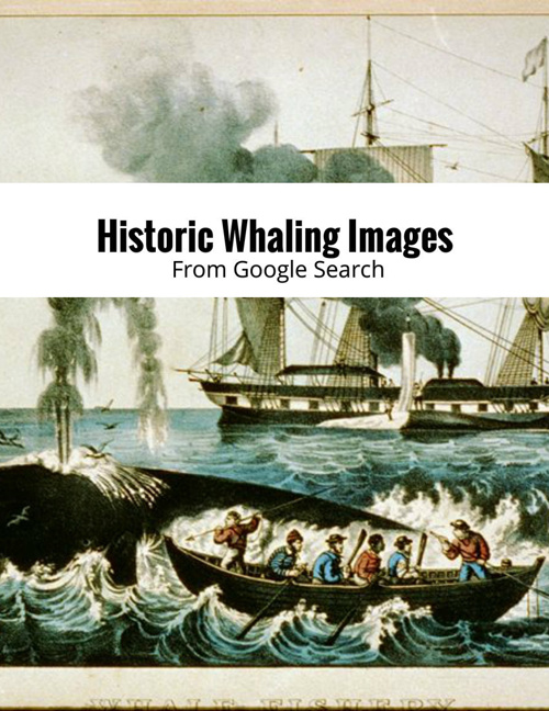 Historic Whaling Images
