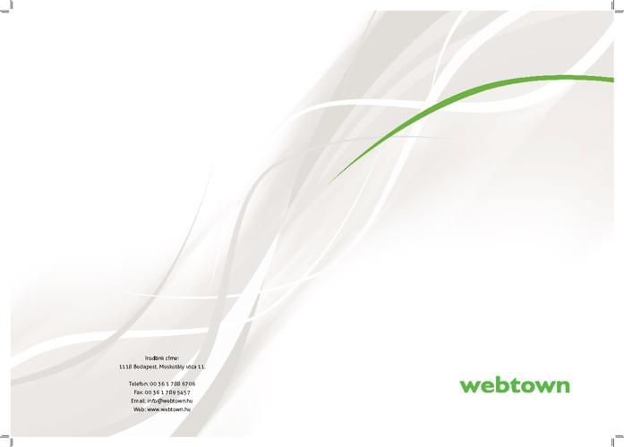 Webtown Cégbemutató