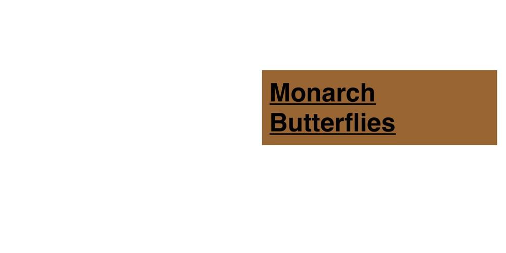 Butterflys Practice