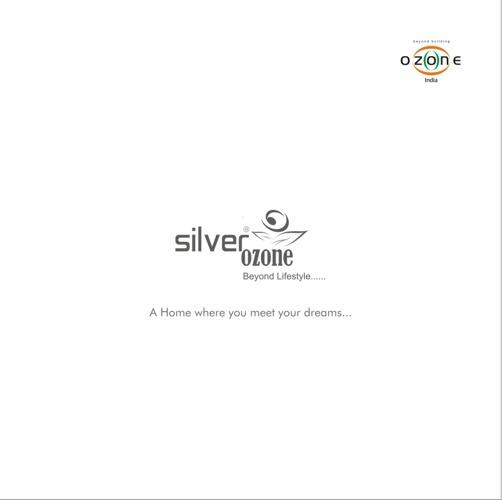 Silver Ozone 3D