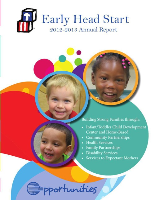 12-13 EHS Annual Report